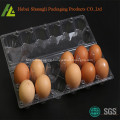 Vacuum form clear blister plastic egg packaging