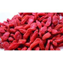лиофилизированная ягода годжи