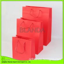 Paper Bag (Euro Tote Paper Bag)