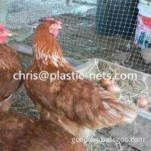 Plastic poly UV-stabilised Poultry mesh netting Fence roll