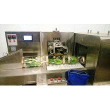 Lettuce Packaging Machine