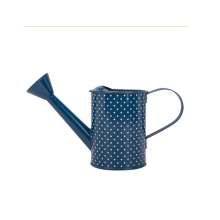 Painted watering can for garden