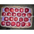 Topo Uma maçã vermelha fresca de hua niu