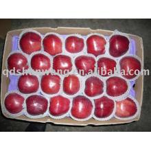 Top Свежее красное яблоко hua niu
