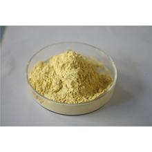 Natural American Ginseng Extract