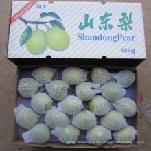 Grüner Shandong-Birnen-Großhandelspreis