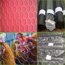 Lowest price small hole Hexagonal chicken wire mesh/pvc coated wire mesh