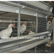 H Frame Layer Chicken Cage Equipment