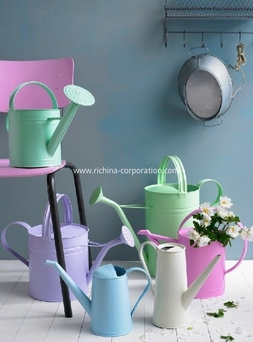 Galvanized Watering Cans