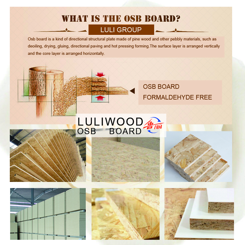 luliwood osb board of sally 20
