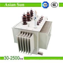 Transformador de distribución (33KV) inmerso en aceite de fase tres de 315kVA
