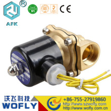 two two-way brass water solenoid valve 24vac