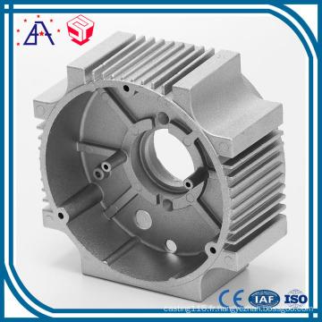 La haute précision adaptée aux besoins du client moule en aluminium de moulage mécanique sous pression (SY1239)