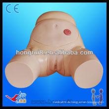 ISO Advanced Weibliche Urethral Katheterisierung Modell