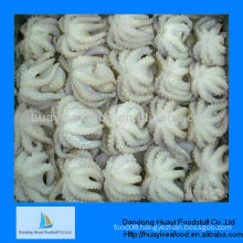 Supply frozen octopus best cleaned baby octopus