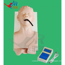 Продвинутый тренинг для трахеи E-body Manikin, Intubation Simulator