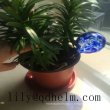 Mini Gools / Bulbs Coloridos para Plantas de Rega