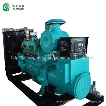 250kVA LNG Power Generator Set