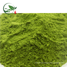 Hot Sale Organic Matcha Powder