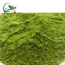 Venda quente Organic Matcha Powder