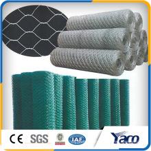 lowest price 25*25mm 50*50mm chicken wire mesh chicken coop galvanized wire mesh 1m* 50m 1.2*50m roll