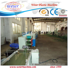 200kg / H Fabrication de bandes de bandes pour animaux de compagnie à partir de flocons 100% recyclés pour animaux de compagnie