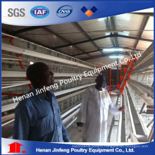 Automatic Day-Old Poultry Raising Equipment