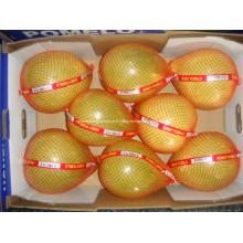 Doux et délicieux pomelo