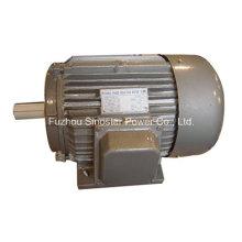 Motor trifásico del generador de CA del hierro de la fundición de la serie de Y