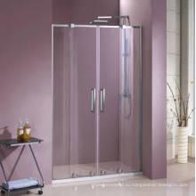 Двойная стеклянная душевая дверь HD440
