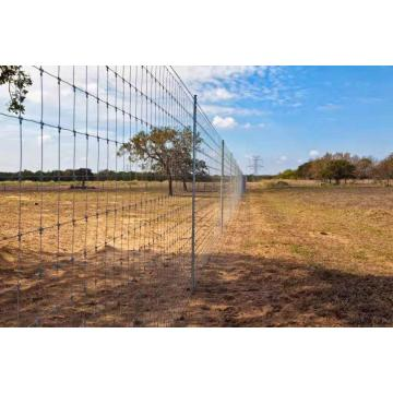 Fattoria e Ranch Fence