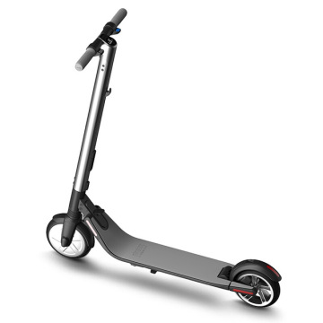 Scooter électrique intelligent de Ninebot KickScooter ES2