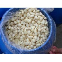 250-350PCS / Kg dentes de alho em salmoura (salgado: 8-15%, 20-22%)