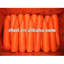 2015 new crop fresh carrots carrot export to Thailand