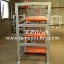 Manure Removal System for Poultry Cage System