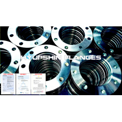 Threaded Screwed Cold Galvanized Steel Flanges