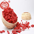 Superfood Dried Goji Berry Red Fruit