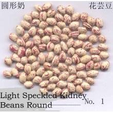 Nueva forma redonda de la cosecha LSKB