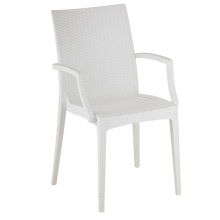 Modern Rattan Design Chair with Arm