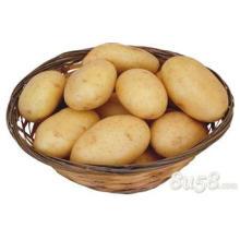 Wholesale bulk potato specifications potato starch specification