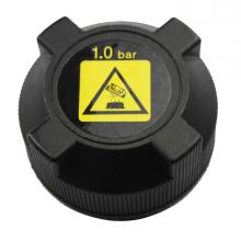 Holiday sales for Coolant Recovery Tank Cap Radiator Cap 46556737 for Alfa Romeo export to Papua New Guinea Factories