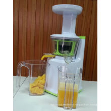 2013 2013 new plastic slow juicer multifunction AJE318