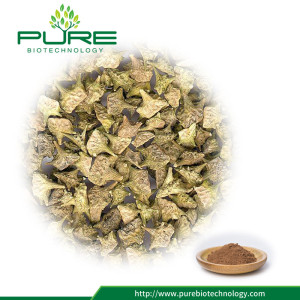 Giá Thấp 100% Natural Tribulus Fruit Powder