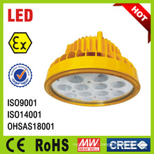 IP66 Ceiling Explosion Proof LED Industrial Lightings