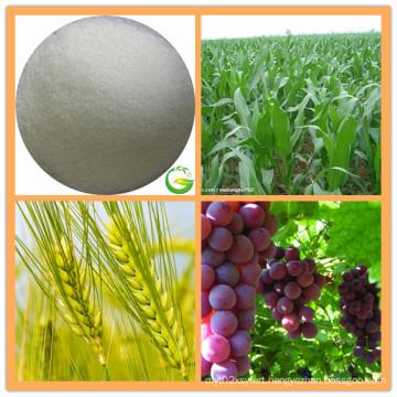EDTA Calcium Fertilizer/EDTA