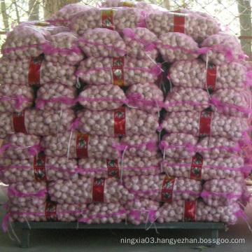 Garlic Chinese wholesale garlic 2021 Fresh New Crop Garlic in bulk for import/export in low price
