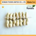 Os melhores produtos de venda de sementes de girassol