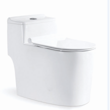 Modern Siphonic One Piece Toilet In White