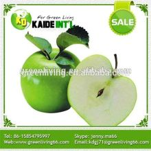 High Quality Fresh Green Apple Fruit