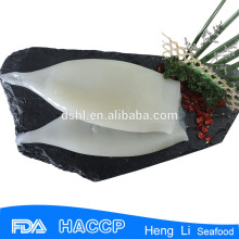 Frozen round squid aquatic product